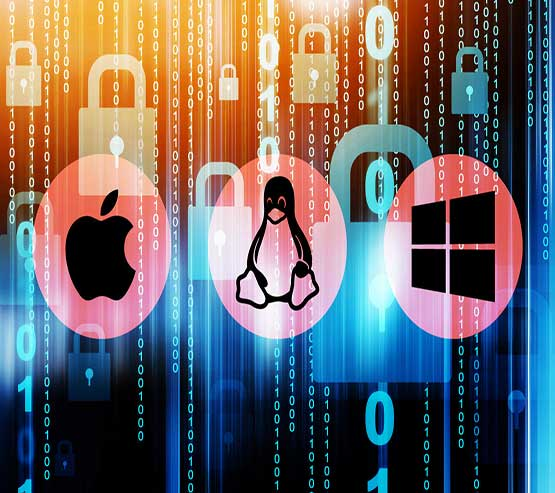 Windows and Linux servers